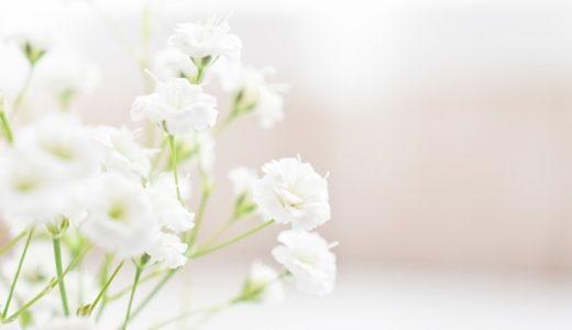 かすみ草の花言葉は怖い?白や青、紫など色別に徹底紹介!!
