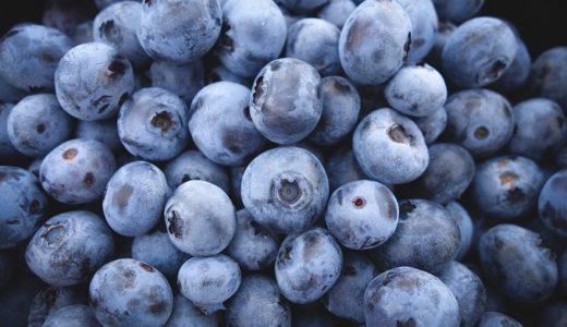 ブルーベリーの花言葉と由来!健康的な果実に付けられた12の意味