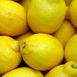たくさんのレモン