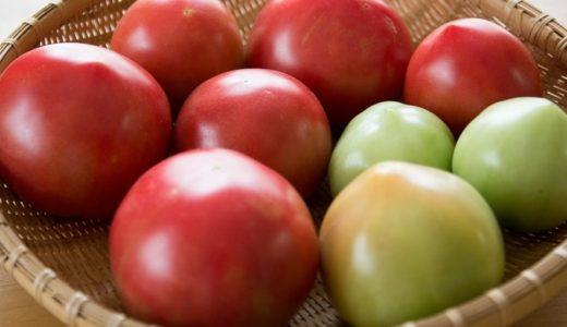 トマトの花言葉!健康的な野菜に込められた言葉とは!?
