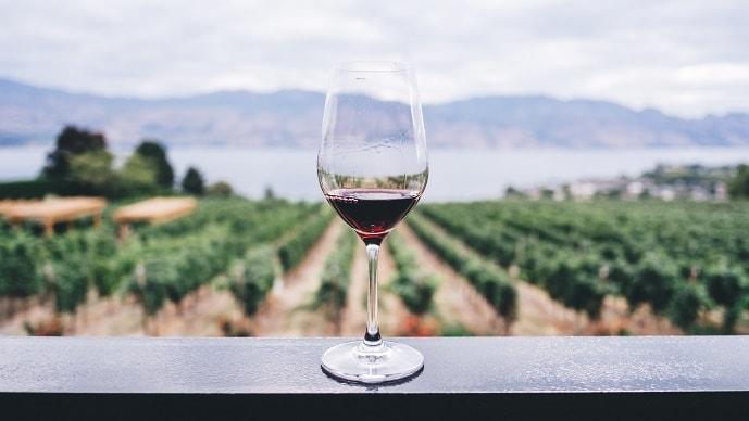 葡萄の花言葉の由来はワイン